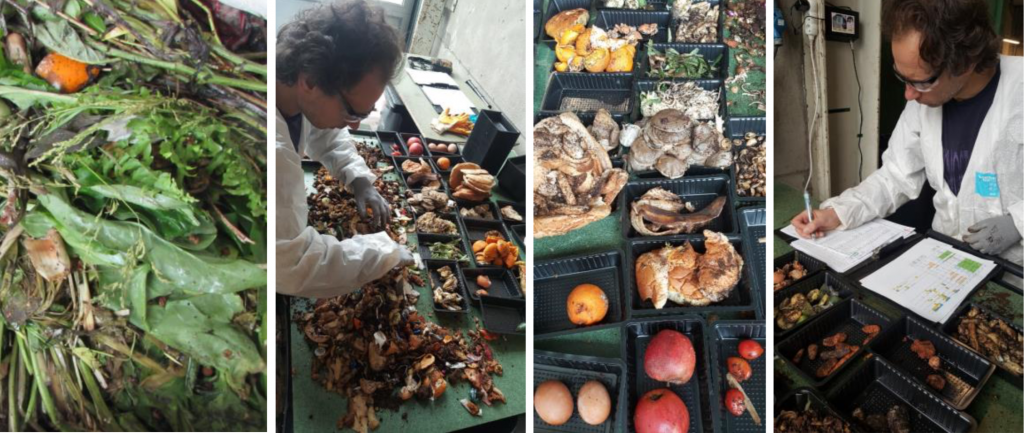 sorting food waste and bread leftovers