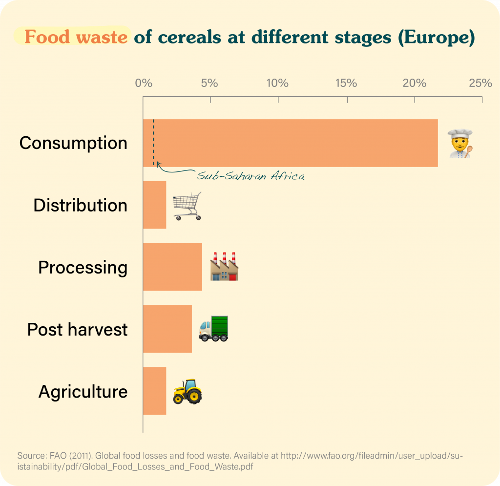 food waste of cereals at different stages in Europe